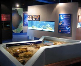 Marine and Freshwater Discovery Centre - Australia Accommodation