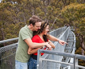 Valley of the Giants Tree Top Walk - Australia Accommodation