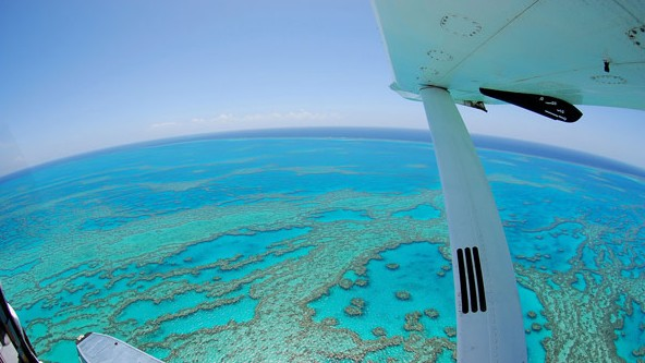 Air Whitsunday Day Tours - Australia Accommodation