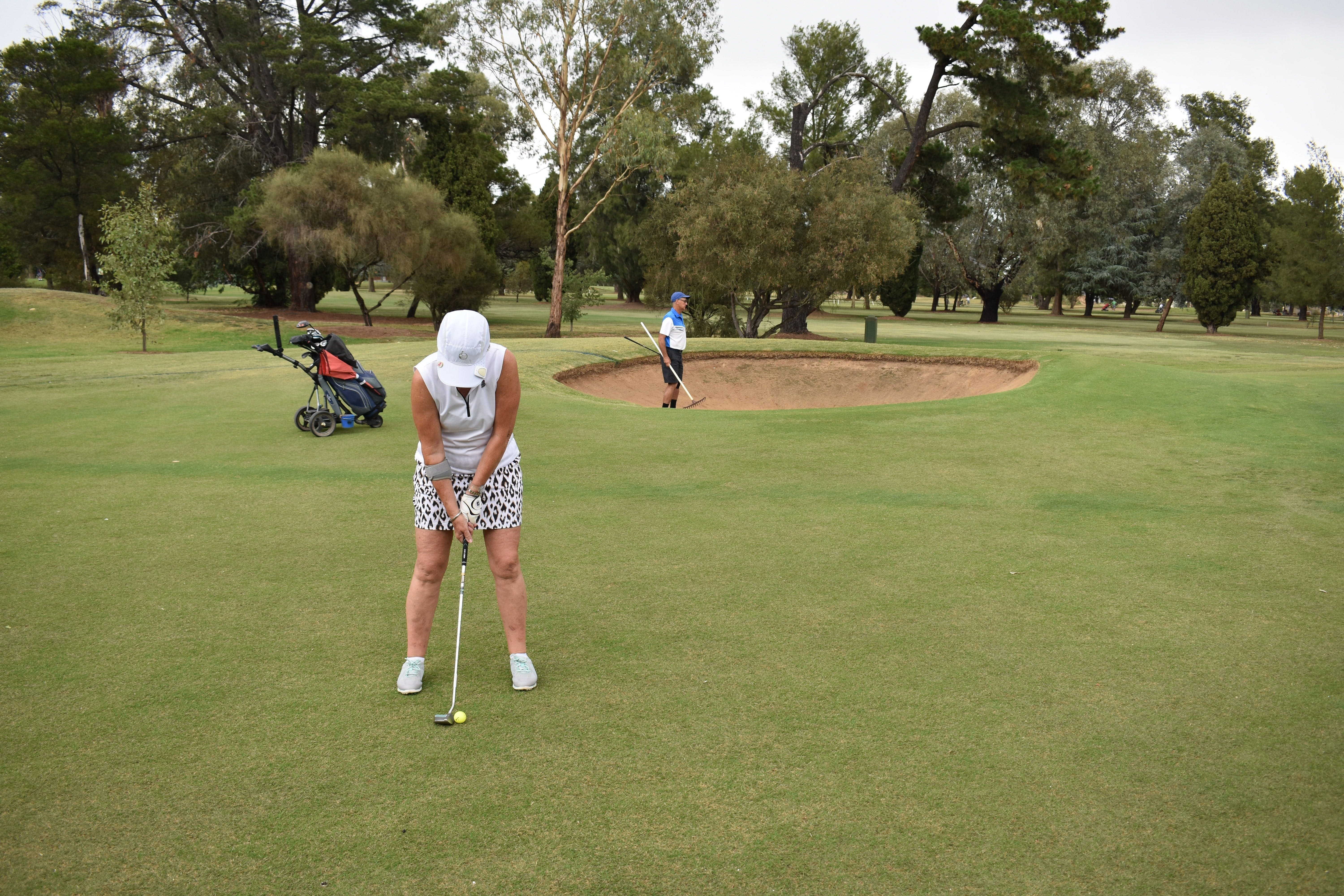 Howlong Golden Shoe Nine Hole Golf Tournament - Australia Accommodation