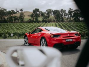 The Prancing Horse Supercar Drive Day Experience - Melbourne Yarra Valley - Australia Accommodation